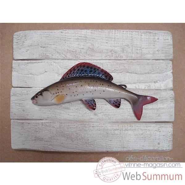 cadre poisson d 39 eau douce cap vert ombre commun cadr16 dans poissons de mer. Black Bedroom Furniture Sets. Home Design Ideas