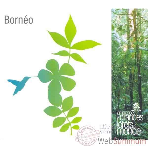 CD Sons Nature Vox Terrae Borneo -vt0183