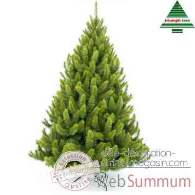 Arbre d.noel richmond pine h185d117vert tips 545 -790626