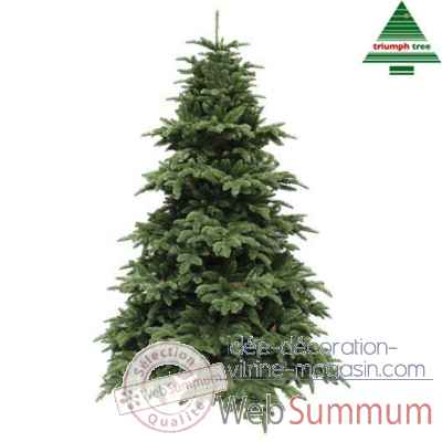 X-mas tree delux abies nordmann h260d175 d.green tips 4406 Edelman -389519