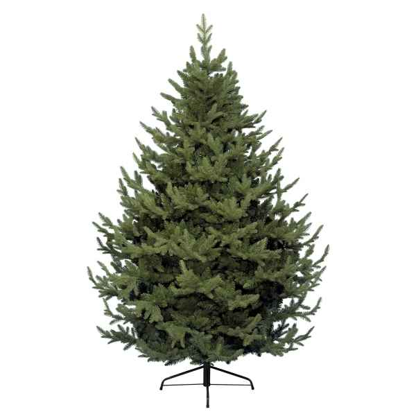 Sapin grove mountain 210 cm Everlands -NF -680052