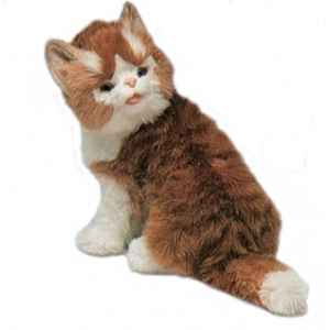 Peluche assise chat maine coon 30 cm Piutre -2381