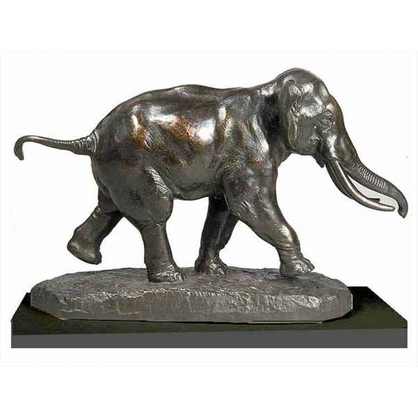 Elephant courant Rmngp -ZF005953